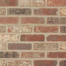 Single Thin Bricks - Flats for Brickwebb (Box of 50) - Castle Gate