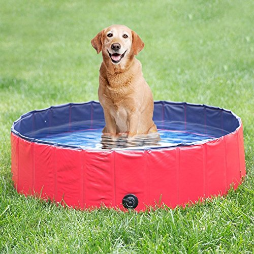 Delifur Foldable PVC Dog Cat Water Pool Pet Outdoor Swimming Playing Pond (L)