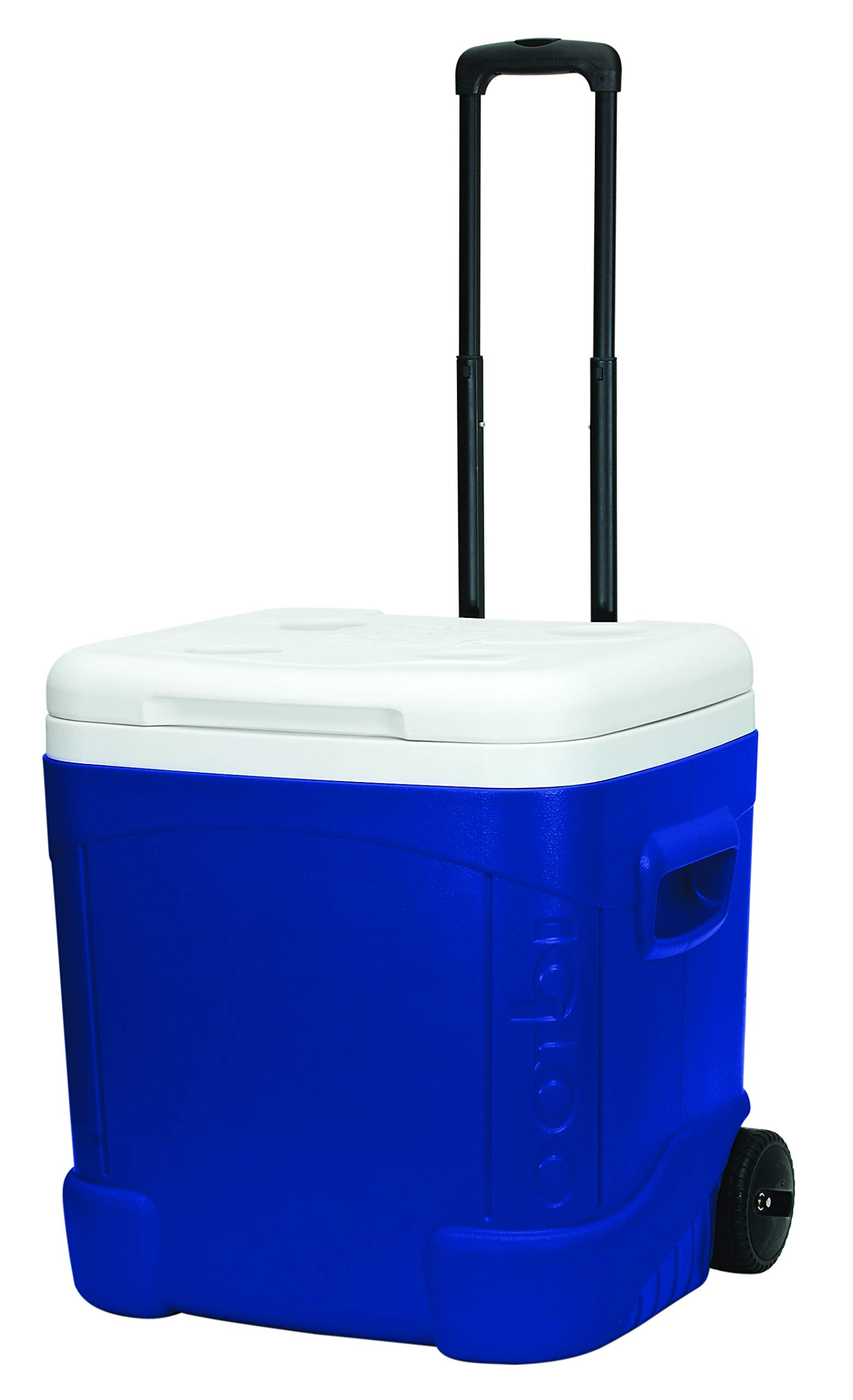 Amazon Com Igloo Ice Cube 60 Quart Roller Cooler Home And Garden Products Sports Outdoors