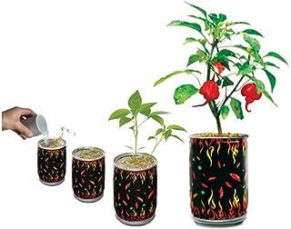 Nature's Greeting Trinidad Scorpion Pepper Magic Can, 3oz/85 gr