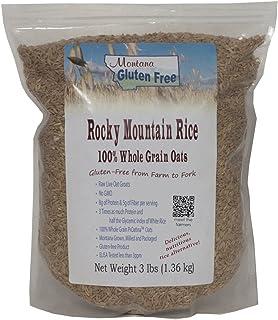 Montana Gluten Free Rocky Mountain Rice Sproutable Oat Groats, 3 Pound
