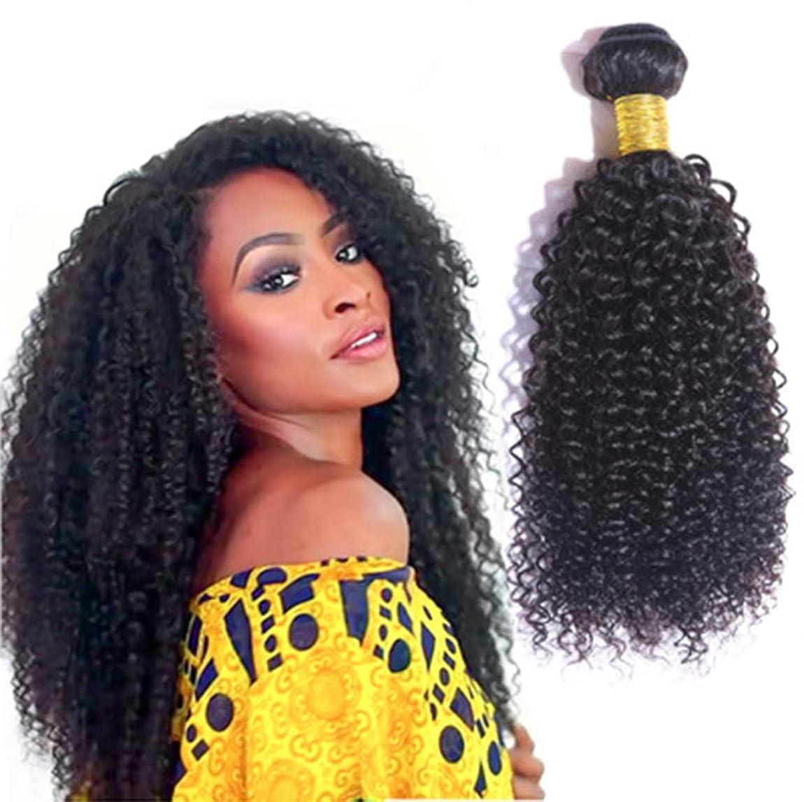 女性ブラジル水波ヘアバンドル100%未処理のバージンレミー人間の毛髪延長3バンドル変態カーリーヘア織り
