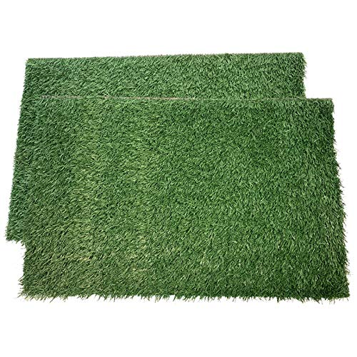 LOOBANI Dog Grass Pee Pads, Artificial Turf Pet Grass Mat Replacement for Puppy Potty Trainer Indoor/Outdoor Use - Set of 2 (14