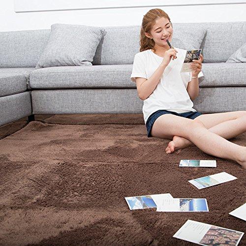 BLZZR * Dik Japanse honingperzik meubeldeken voor de woonkamer, sweatshirt, kleur bank, bed en kamer met tapijt, 200 cm x 250 cm, klinknagels, donkerbruin/koffie.