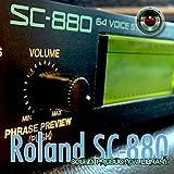 Immagine 2 for roland juno 106 the