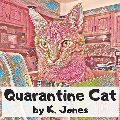Quarantine Cat
