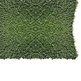 PZG 1-inch Artificial Grass Patch w/ Drainage Holes & Rubber Backing | 4-Tone Realistic Synthetic Grass Mat | Heavy & Soft Pet Turf | Lead-Free Fake Grass for Dogs or Outdoor Decor | Size: 40' x 24'