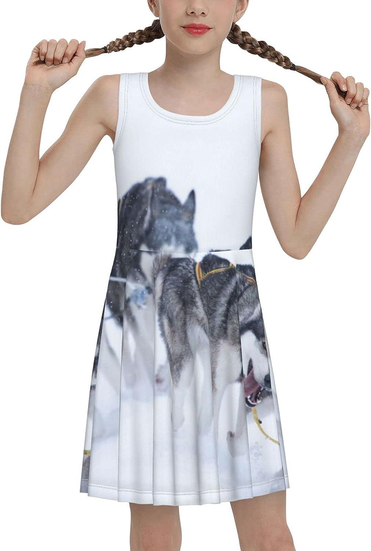 Husky Dog in Winter Sleeveless Dress for Girls Casual Printed Pleated Skir