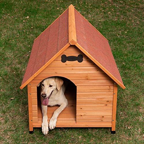 – Caseta de perro resistente y atractivo Exterior Caseta de perro