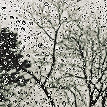 #1 Meditation Rain Sounds