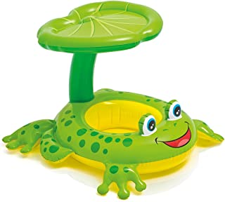 Intex Shaded Frog Float pool