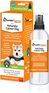 Best lavender oil diffuser for dogs Reviews