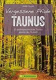 Wanderführer Taunus: 35 Touren abseits des Trubels im wunderschönen Taunus. Wandern auf vergessenen Pfaden mit Panorama, Gipfeltouren und ebenen ... Touren abseits des Trubels (Erlebnis Wandern)