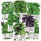 Basil Seed Packet Collection (8 Individual Seed Packets) Non-GMO Seeds...