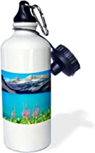 3dRose wb_206112_1 Canada, Alberta, Fireweed Wildflowers in Banff National Park Sports Water Bottle, 21oz, Multicolored