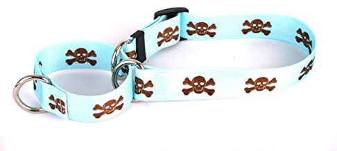 """Yellow Dog Design Blue And Brown Skulls Martingale Dog Collar 1"""" Wide And Fits Neck 14 To 20"""", Medium"""