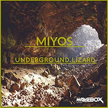 Underground Lizard