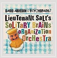 Lieutenants Salt's Solitary Brains Organization Or