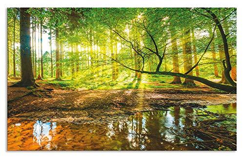 Artland Spritzschutz Küche aus Alu für Herd Spüle 50x80 cm Küchenrückwand mit Motiv Natur Landschaft Wald Bäume Sonne Bach Landhaus Grün T9IO