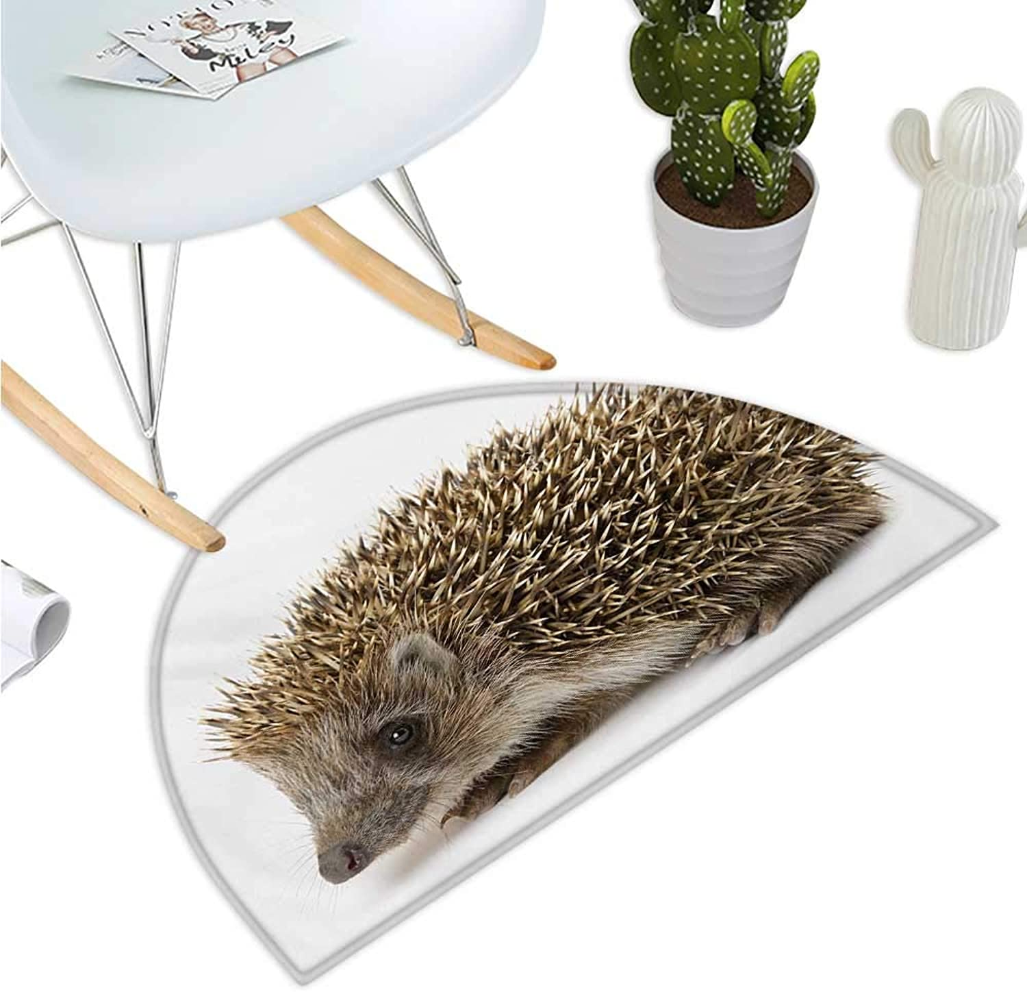 Hedgehog Semicircular Cushion Small Cute Mammal with Spiked Hair on Its Back and Sides Wildlife Photography Halfmoon doormats H 35.4  xD 53.1  Cocoa Brown