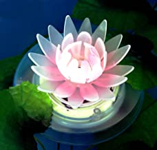 Best lily pad solar pool warmers Reviews