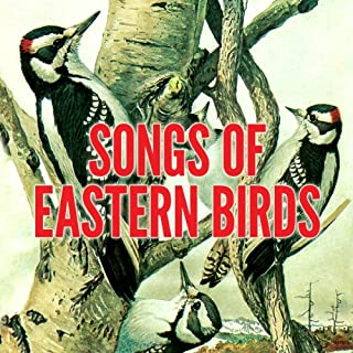 Songs of Eastern Birds audiobook cover art