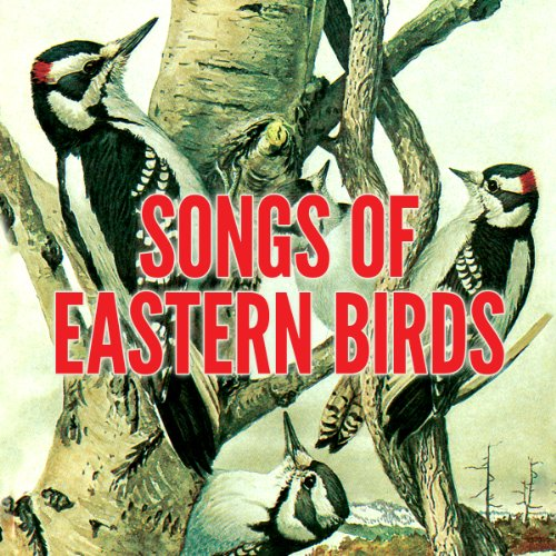 Songs of Eastern Birds                   By:                                                                                                                                 Donald J. Borror                               Narrated by:                                                                                                                                 uncredited                      Length: 52 mins     3 ratings     Overall 3.7