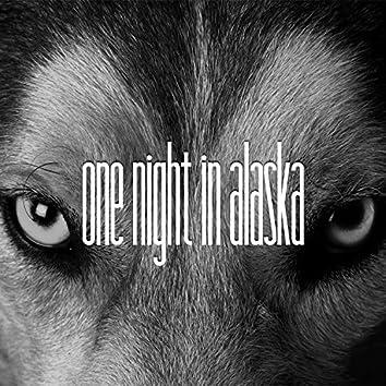 One Night in Alaska