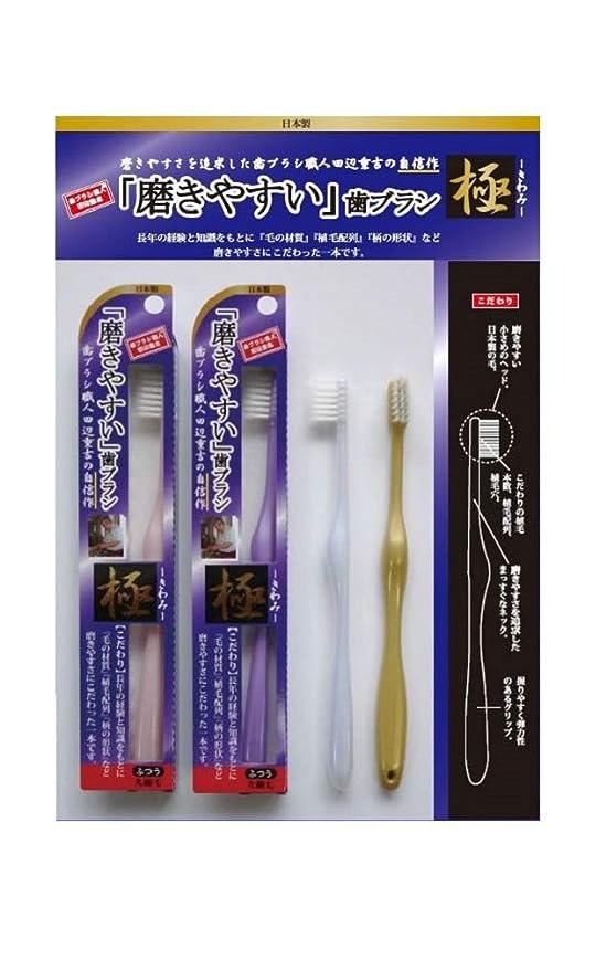 反対パスタ桁歯ブラシ職人 田辺重吉 磨きやすい歯ブラシ 極 先細毛タイプ LT-22(1本×4個セット)