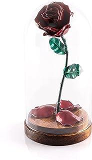 """Eisen Schmiede ewige""""Die Schöne und das Biest"""" Rose mit gefallenen Blütenblättern und in Glaskuppel auf Holzgestell (Rot/G..."""
