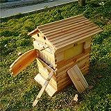SJZC Bee Hive Abeilles Auto-coulantes, séchage en nid d'abeille, Polissage, Cire bouillante, prévention des Fissures, Extraction Automatique du Miel, Outils pour l'apiculture, Maison des Abeilles