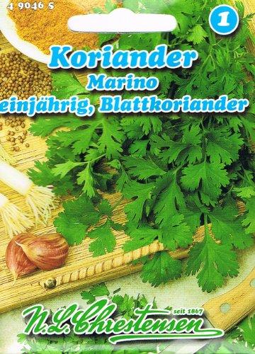 Koriander, Marino (Blattkoriander) - (Portion)