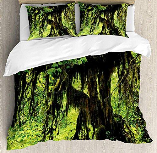 Rainforest Ensemble de housse de couette King Size, arbre avec de la mousse dans la jungle Natural Life, motif de plantes silencieuses zen feng shui, ensemble de literie décoratif avec 3 taies d'oreil