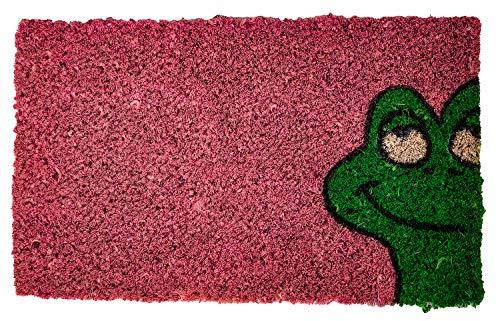 Felpudo de fibra de coco para niños, 37 x 22 cm, diseño de rana
