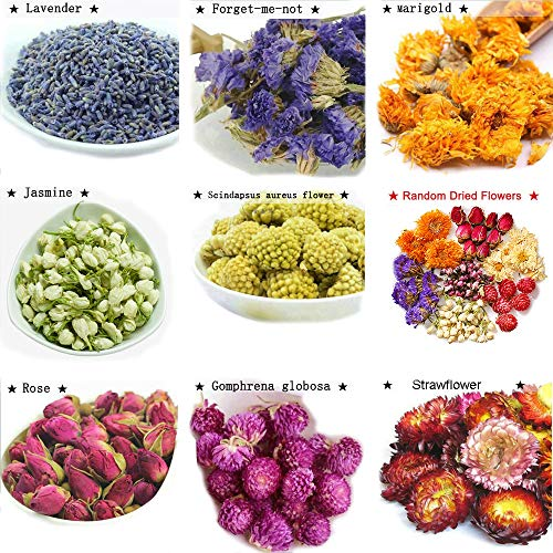 TooGet Flower Petals and Buds Includes Lavender, Forget-me-not, Marigold, Jasmine, Scindapsus aureus Flower, Rose, Gomphrena globosa, Strawflower, Kinds of Crafts