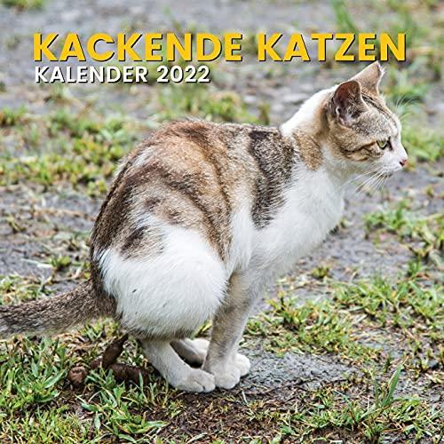 Kackende Katzen Kalender 2022: Lustige Geschenk für Katzenliebhaber Männer Frauen Mädchen Kinder Teenager Freund Mitarbeiter Geburtstag oder Weihnachten