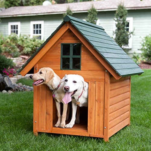 Extra Large Outdoor Dog House Dog Kennel 40w X 44d X 47h Solid Wood for...