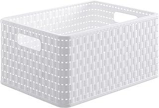 Rotho Basic Cestino dei rifiuti 10l Plastica PP senza BPA Transparente 10l 26.0 x 26.0 x 28.0 cm