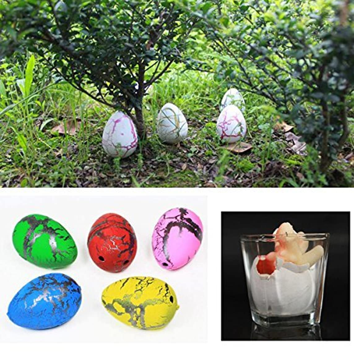 Science & Discovery Toys - Hatch Animal Planet Surprise Animals Easter Science - 2x Medium Funny Magic Growing Hatching Dinosaur Eggs Christmas Child Gifts 4×3.5cm -