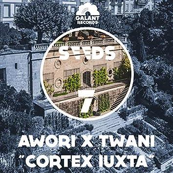 Cortex Iuxta