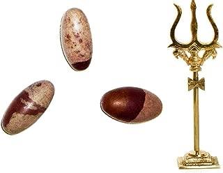 Siddhratan 3 Pcs Narmada Shivling 1