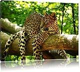 Leopard auf Ast Format: 100x70 cm auf Leinwand, XXL riesige