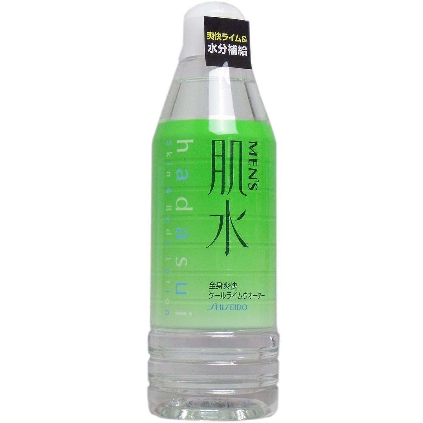レジ一定応用メンズ肌水 ボトルタイプ 400ml