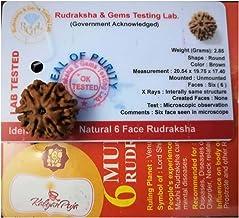 6 Mukhi Certified Rudraksh Nepal