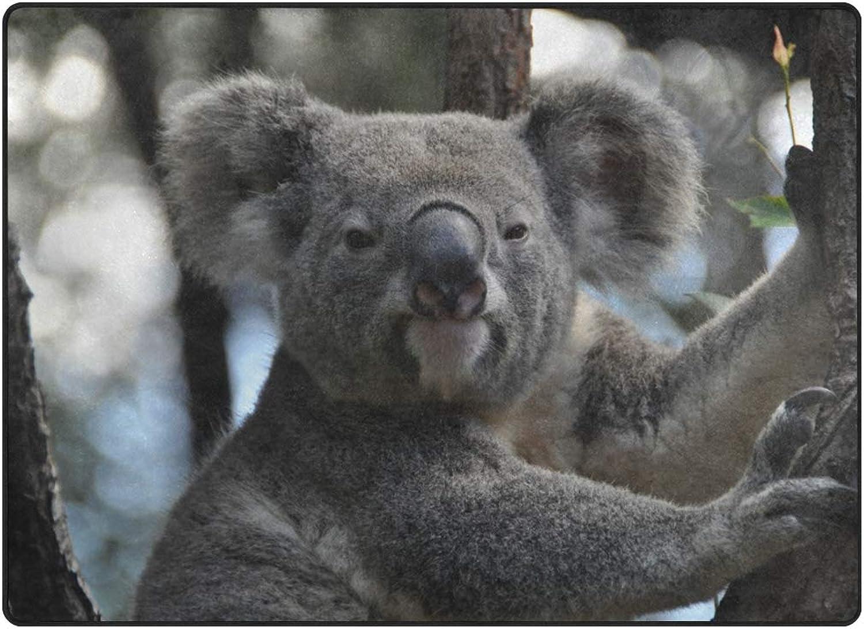 FAJRO Australia Animal Koala Rugs for entryway Doormat Area Rug Multipattern Door Mat shoes Scraper Home Dec Anti-Slip Indoor Outdoor