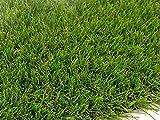 Césped artificial ARES. 30 mm. Medidas 2 x 10 m (20 m2).'El triunfo en tu jardín'. Envío Gratuito