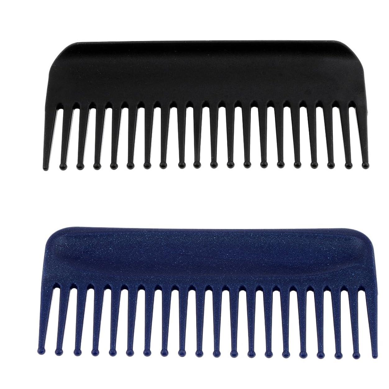 罰するフレキシブル同封するBlesiya コーム 櫛 ヘアコーム ヘアブラシ  マッサージ 美髪ケア 快適 プラスチック製 2個