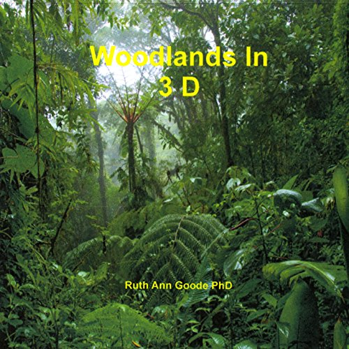 Nature Woodlands in 3d
