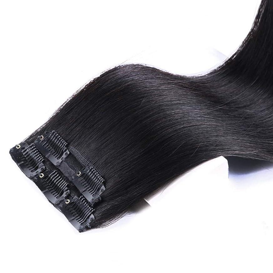 びっくりする角度スクワイアBOBIDYEE 女性の長いストレートヘアクリップヘアエクステンションワンピースシームレスな目に見えないかつらパーティーウィッグ (色 : [2 clip] 60cm natural color)