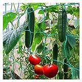 HJHQQ-CZYHG Candido Premium con Grandi Dimensioni a Rete per Un Raccolto particolarmente redditizio di cetrioli, per Giardino e Serra (Color : 2m*10m)